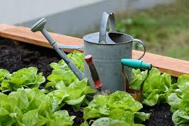 Formation de permaculture appliqué au jardinage @ CITIM | Luxembourg | District de Luxembourg | Luxembourg